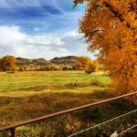 Pinos Creek Ranch