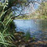 Roaring River Ranch