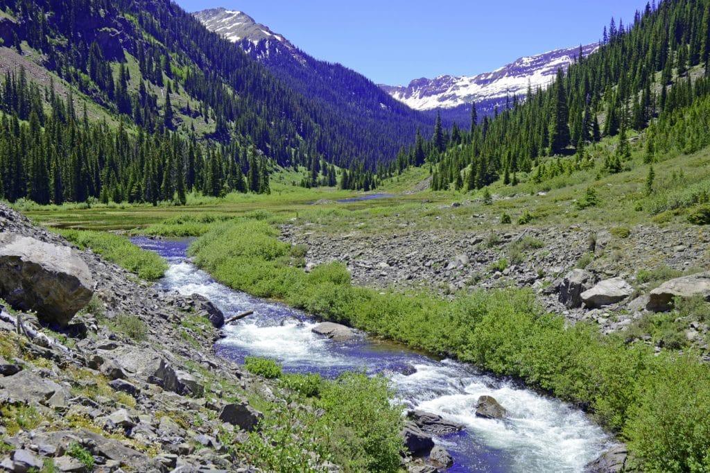 mountain stream in the elk range