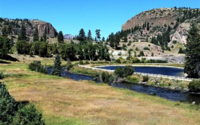 Guide to Buying Land in a Ranch Community