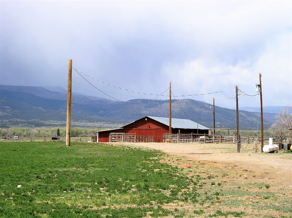 Lonesome Ranch - Cattle Ranch