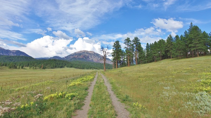 Piedra Forks Ranch Driveway with Mountain View