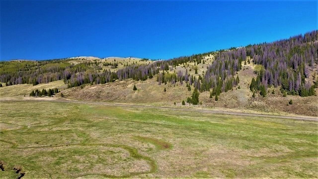 South Colorado Agriculture Ranch - Rio de Los Pinos Ranch