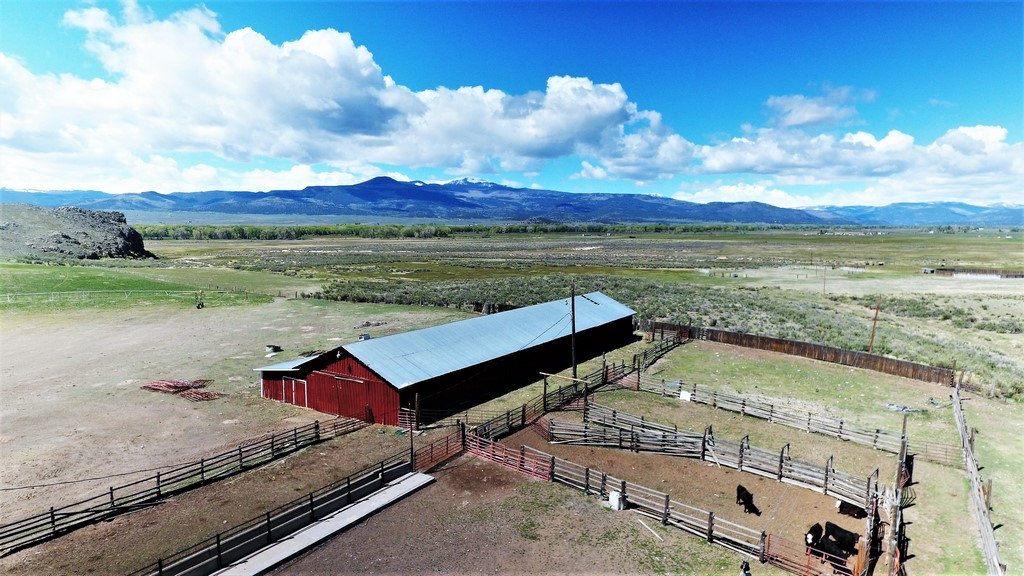 Lonesome Ranch - Cattle Land
