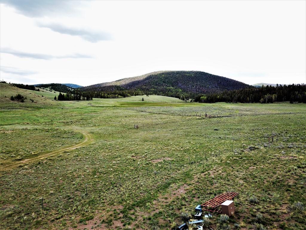 Cattle Ranch in Saguache, CO - Los Creek Ranch