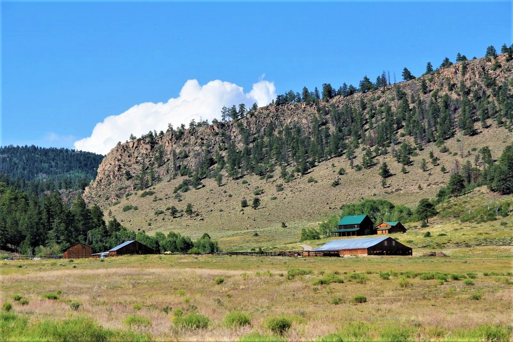 Horse Ranch For Sale Powderhorn, Colorado