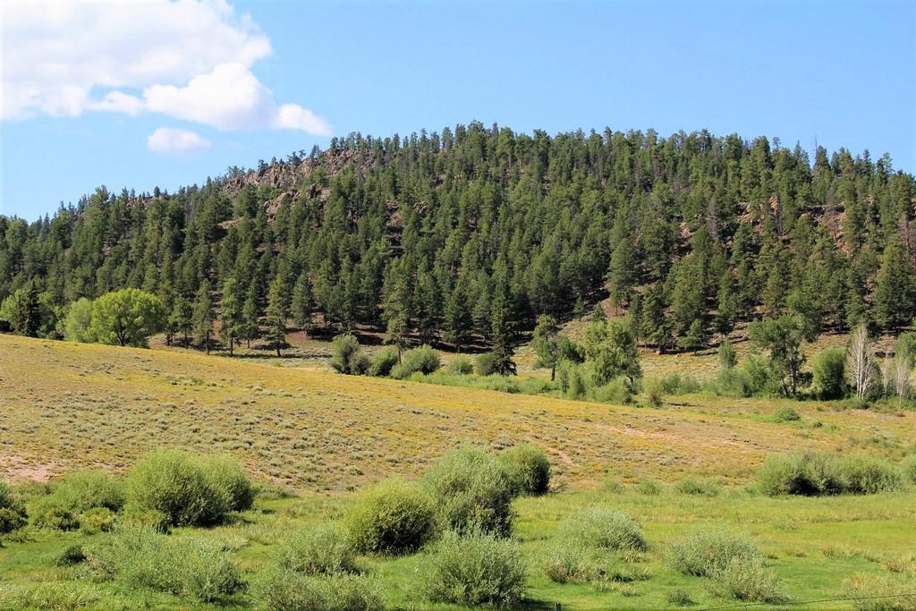 Powderhorn Creek Ranch - Gunnison County Land For Sale