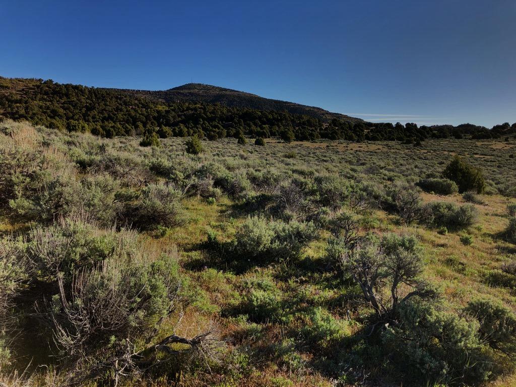 Juniper Mountain Ranch Property Peak