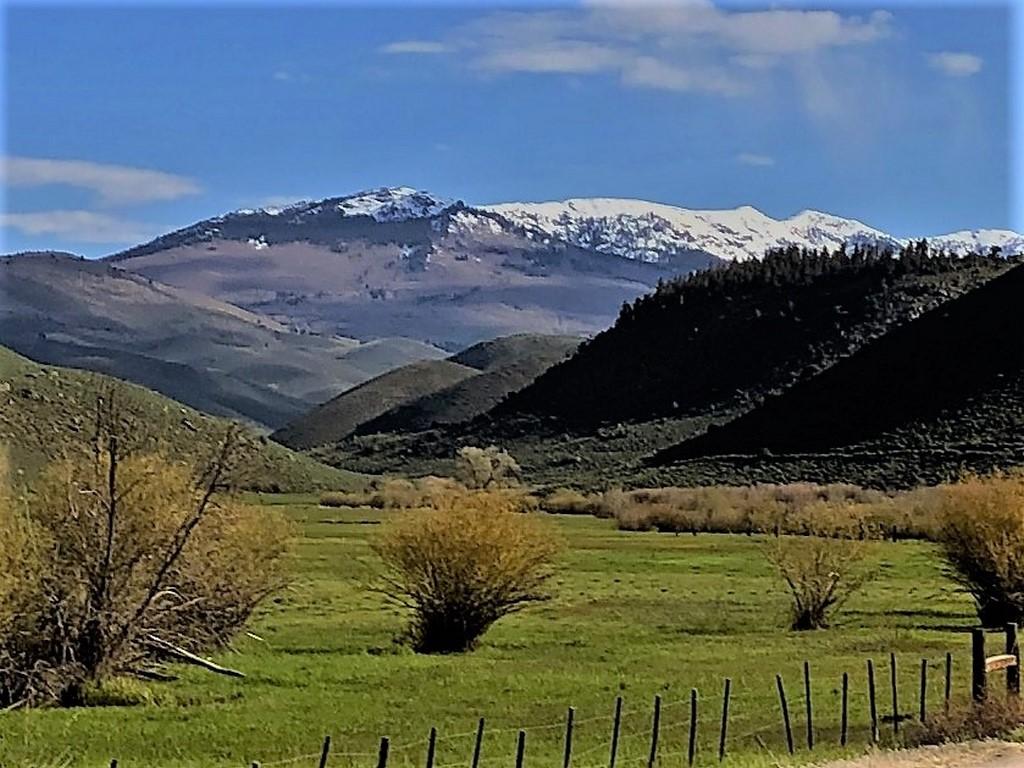 Circle J Ranch Mountain