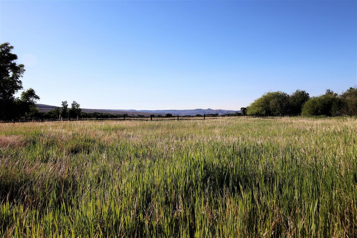 Shared Ranch in Gunnison, CO - Eagle Ridge Ranch Homestead #4