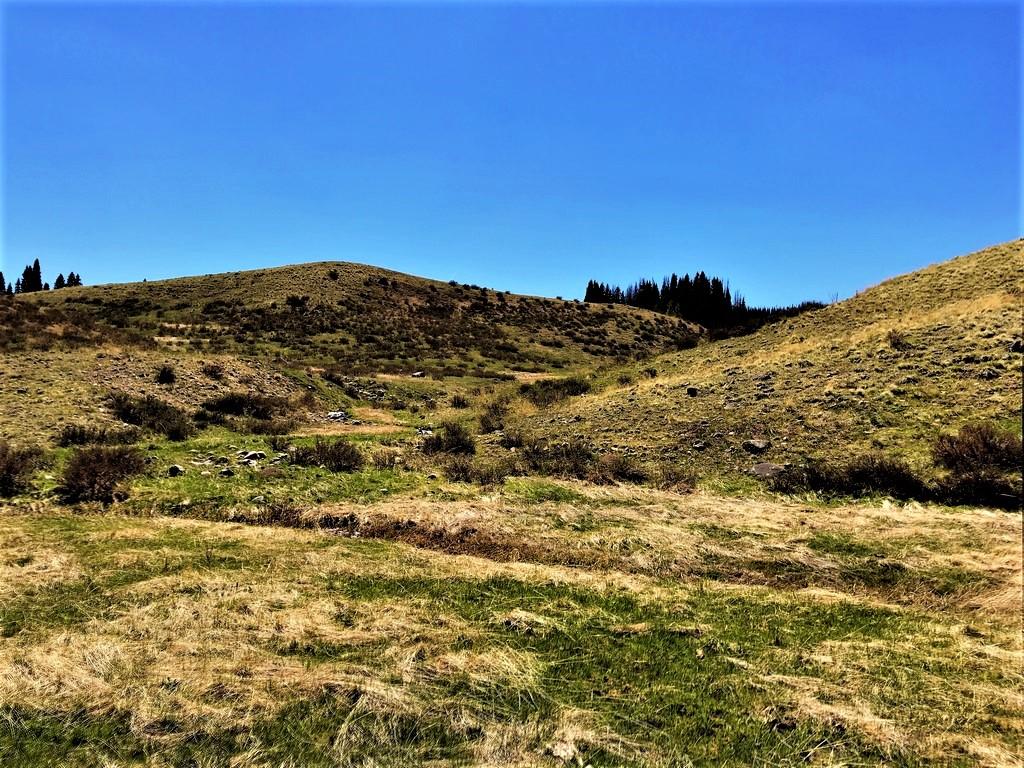 South Colorado Ranch Land For Sale - Rio de Los Pinos Ranch