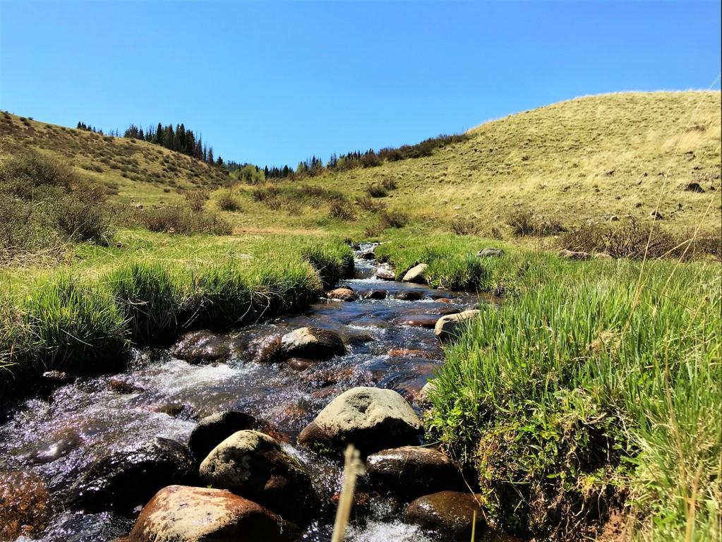 Rio de Los Pinos Ranch - Water Property