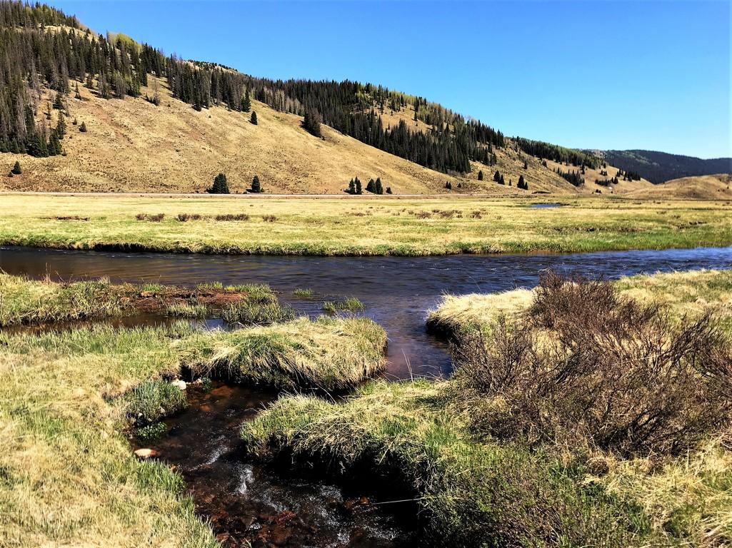 Fishing Ranch in South Colorado - Rio de Los Pinos Ranch