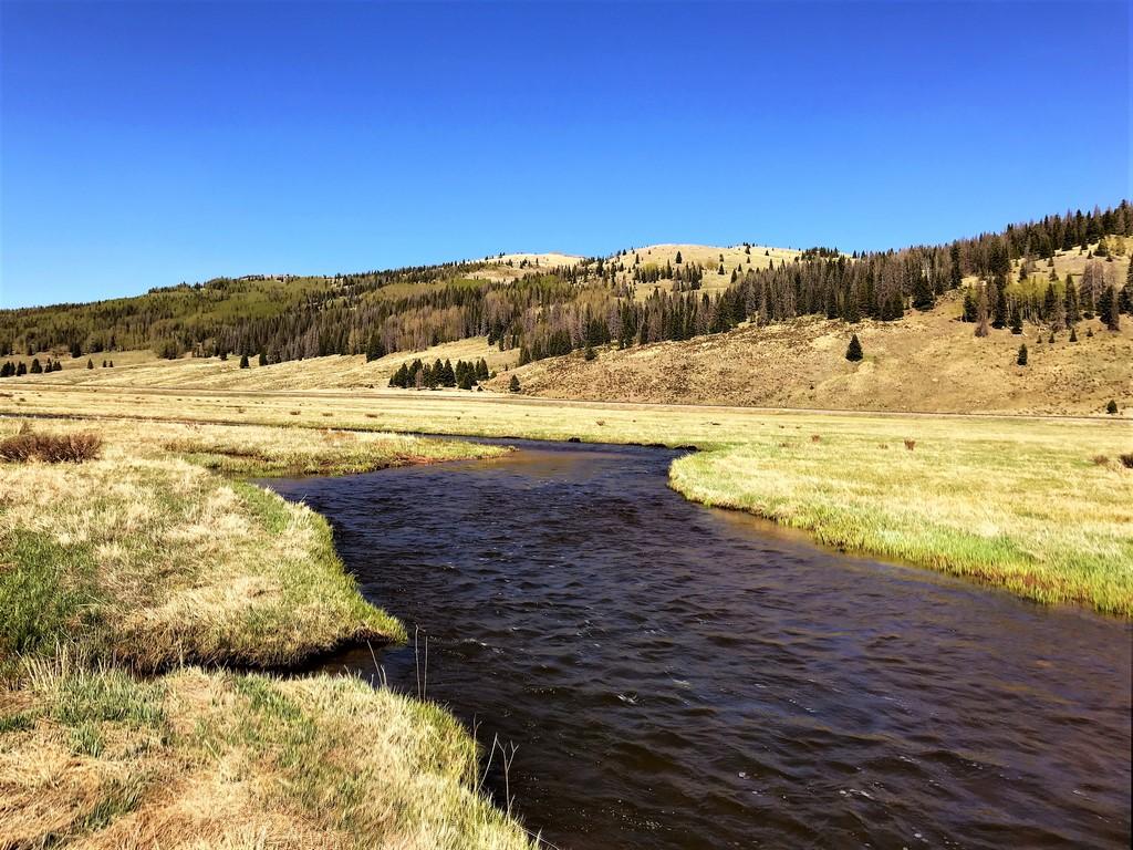 Rio de Los Pinos Ranch - Live Water Property
