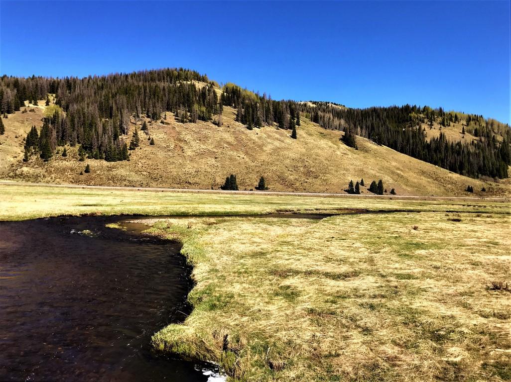 Colorado Trout Fishing Ranch - Rio de Los Pinos Ranch