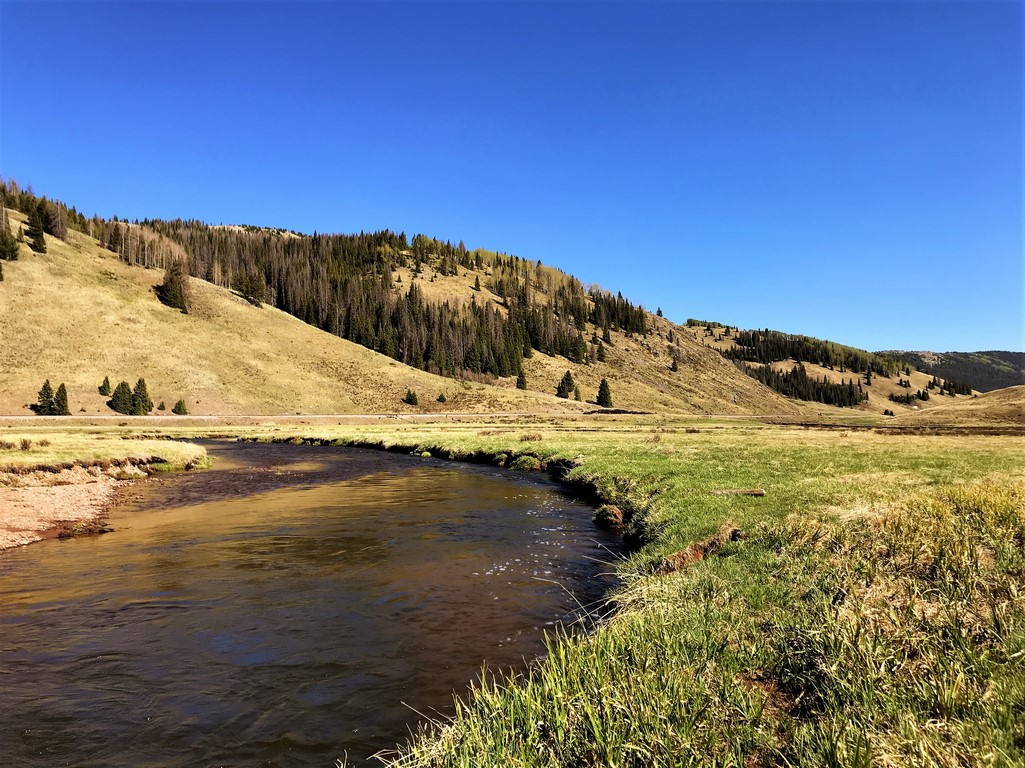 Colorado Live Water Ranch For Sale - Rio de Los Pinos Ranch
