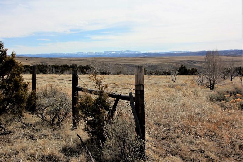 Juniper Mountain Ranch Cattle Land