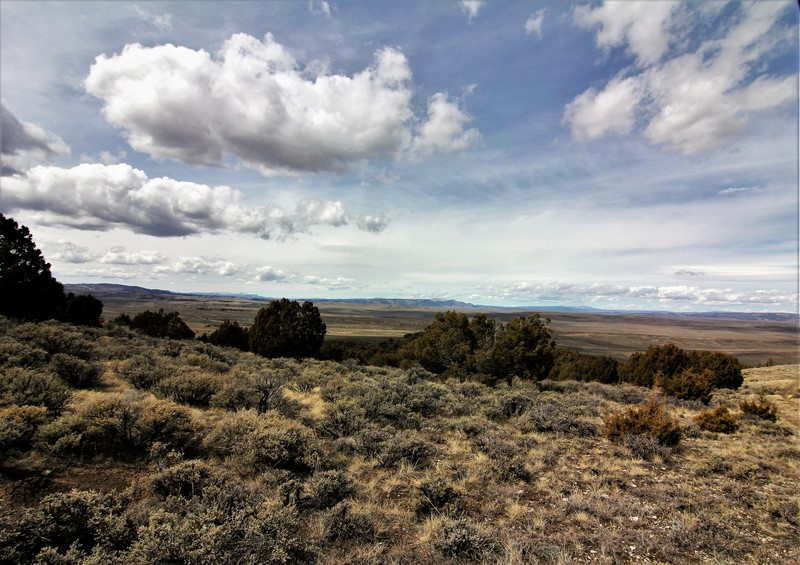 Craig, CO Land For Sale