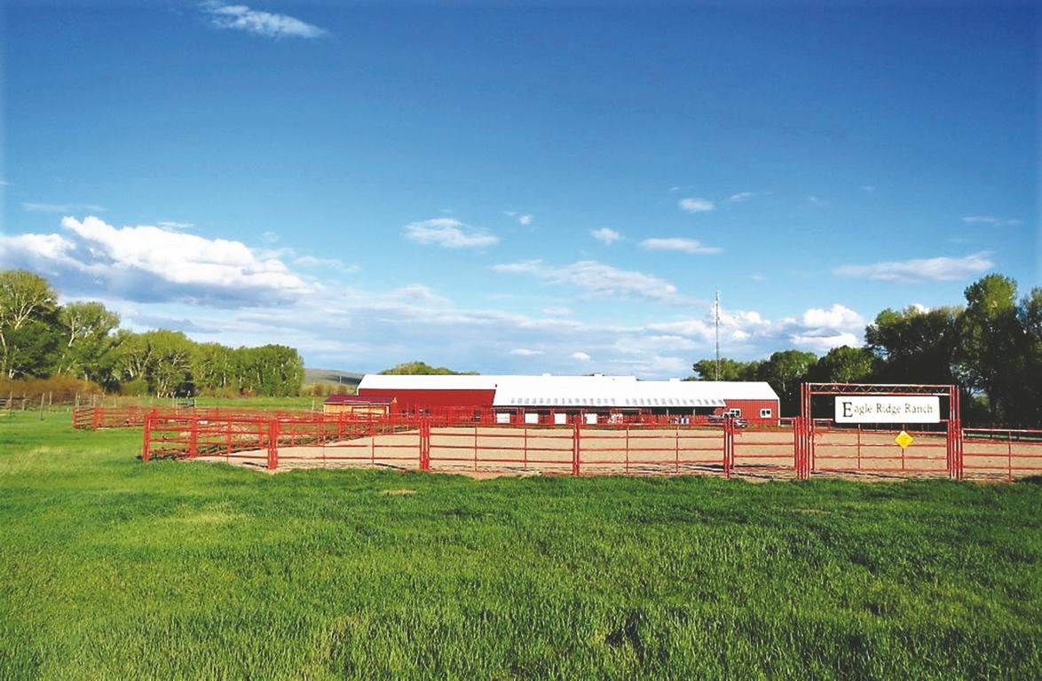 Eagle Ridge Ranch - Shared Colorado Ranch
