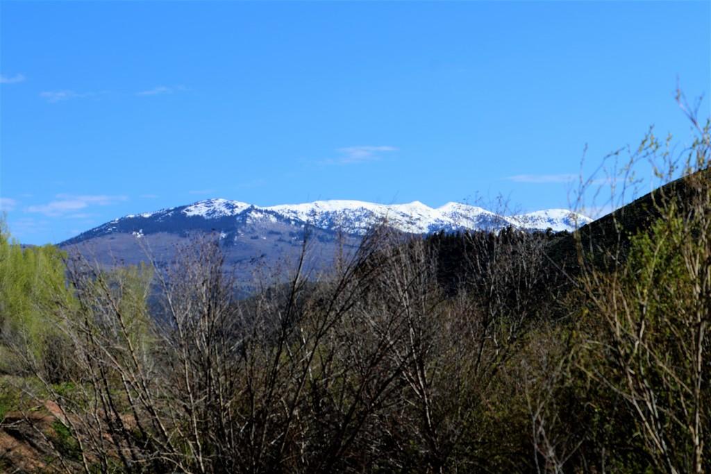 Circle J Ranch - Mountain