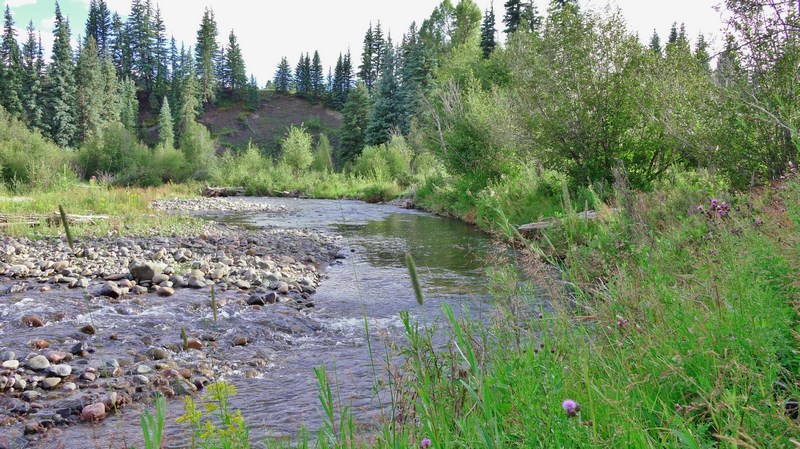 Fly Fishing Property - Piedra Forks Ranch