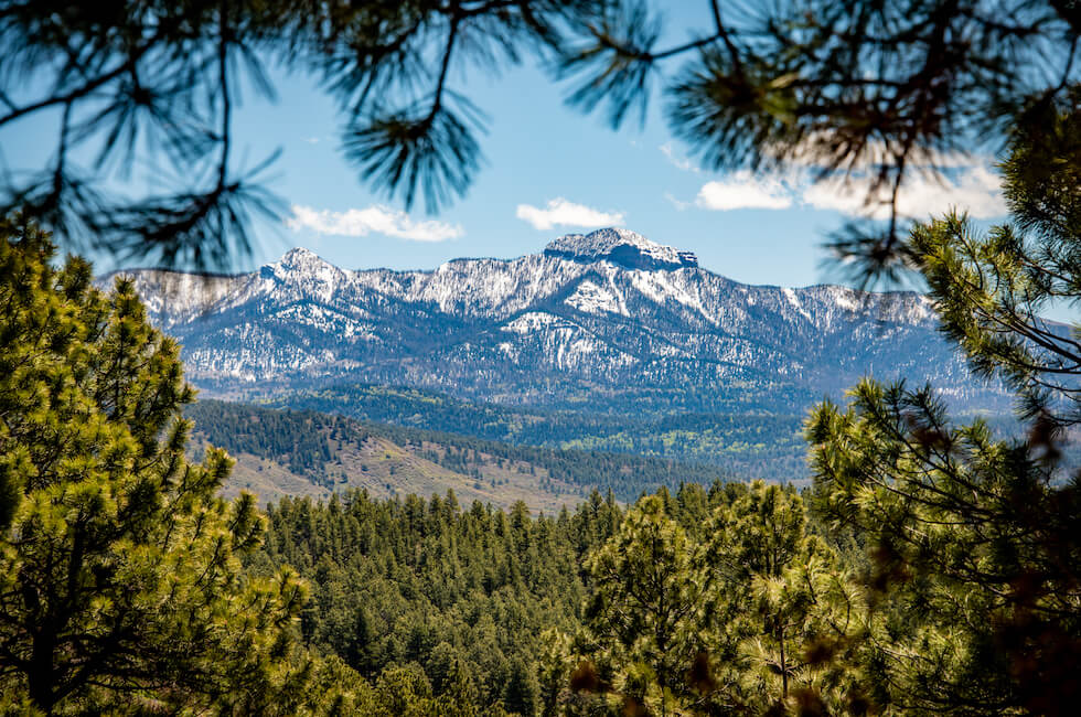 Pagosa Springs Office - M4 Ranch Group