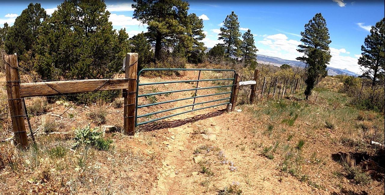 Colorado Cattle Ranch - Suckla Ranch