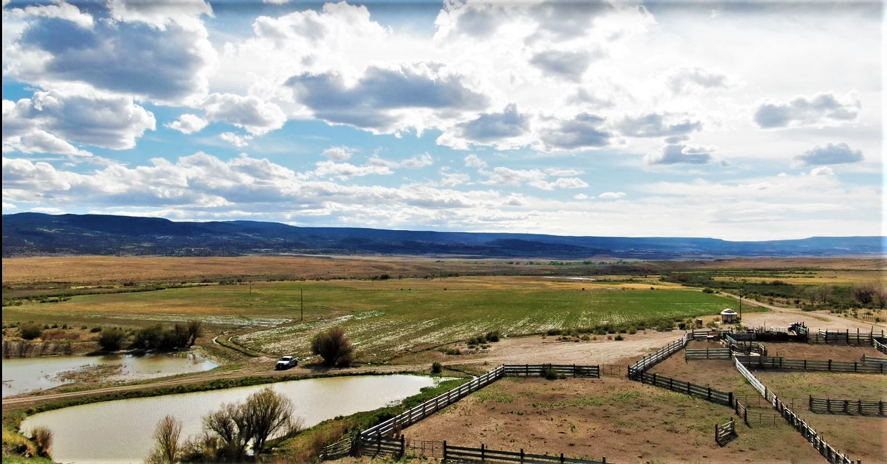 Farming & Agriculture Ranch - Suckla Ranch