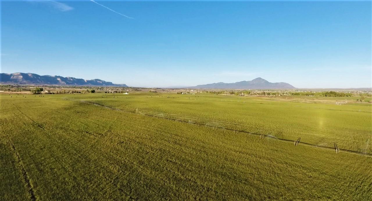 Cortez, CO Ranch - Quarter Circle E Ranch