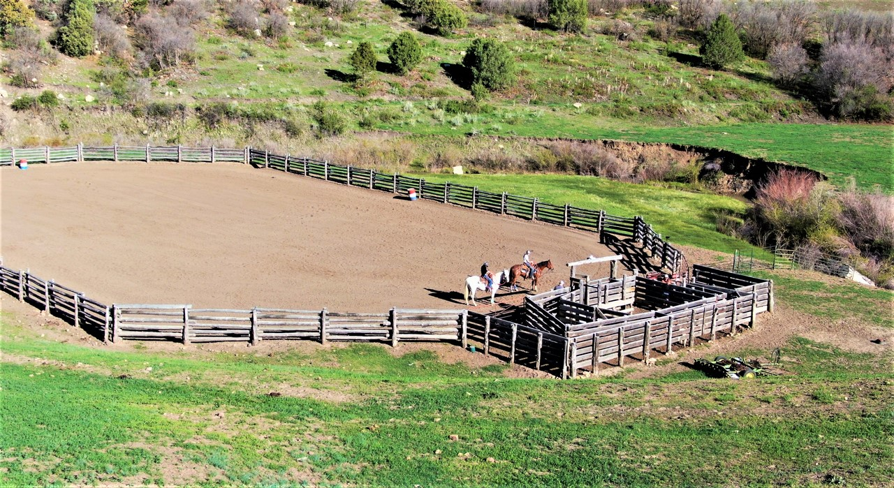 Pitman Cherry Creek Horse Ranch