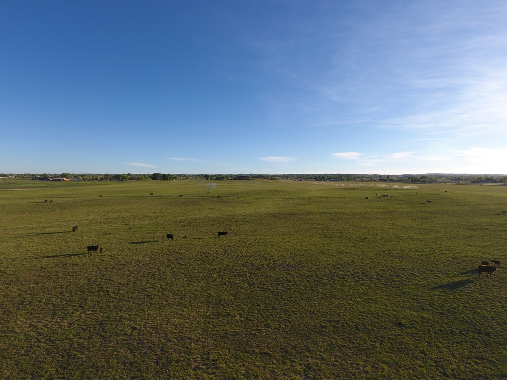 Quarter Circle E Ranch - Cattle Ranch
