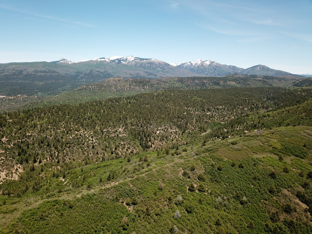 Hesperus, CO Land For Sale - Devils Canyon Ranch