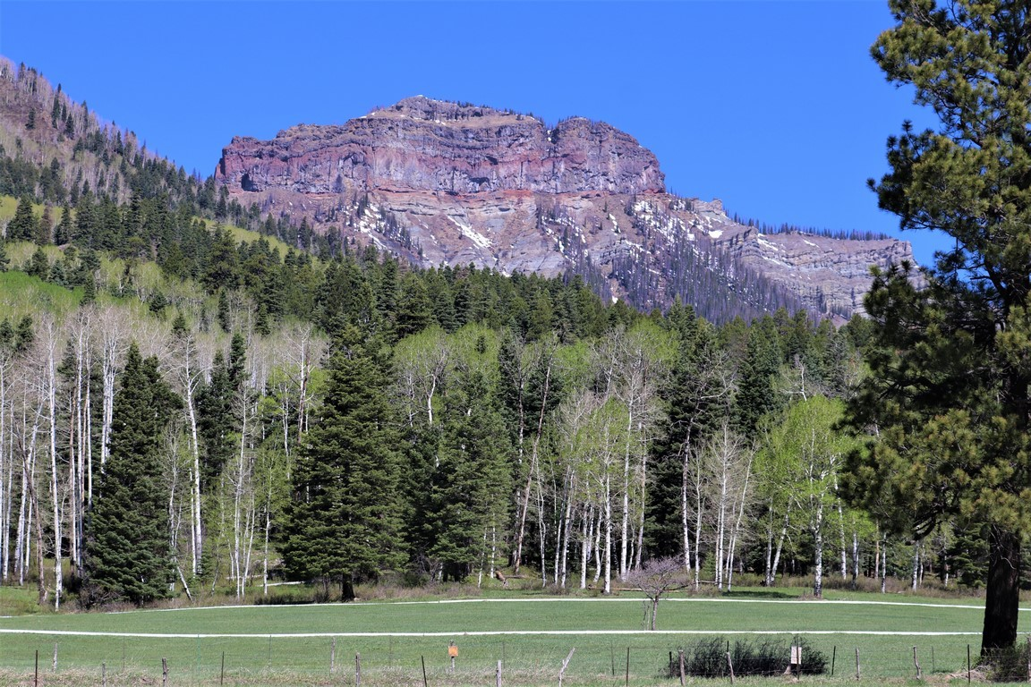 Agriculture Ranch For Sale in Pagosa, CO - The Harvey Ranch 35