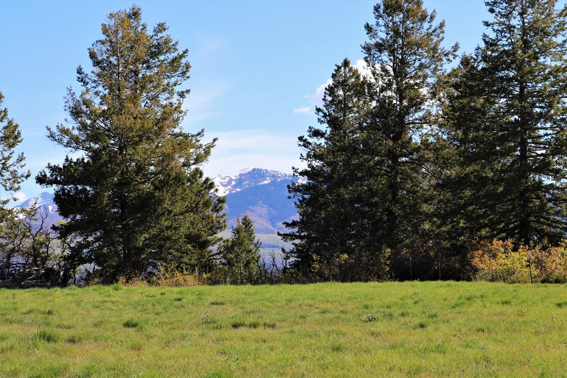 La Plata Mountain Ranch Mountain View