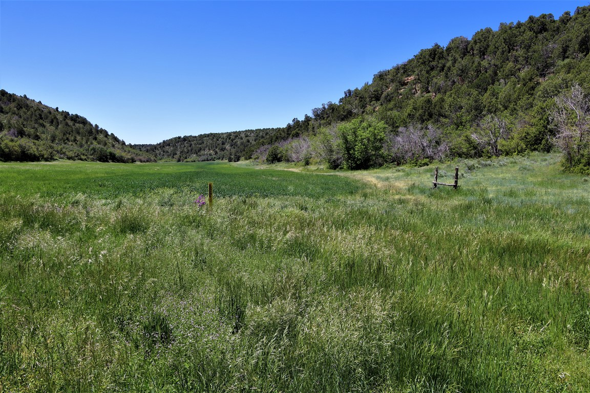 Devils Canyon Ranch Field