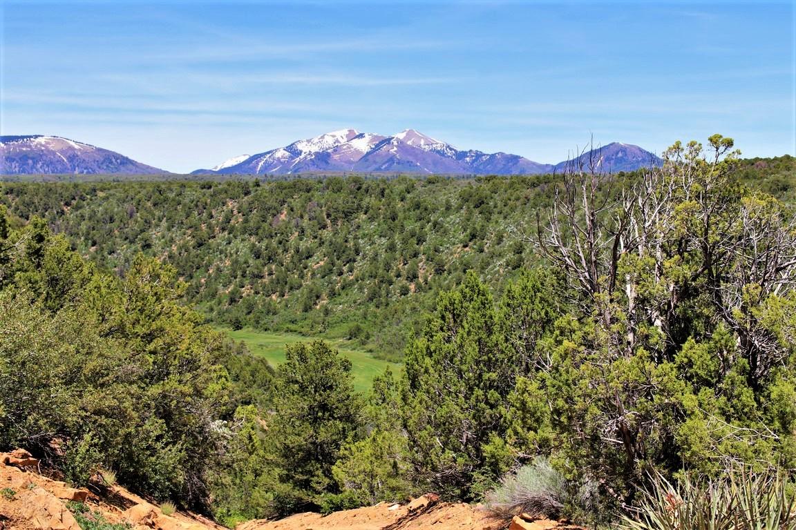 Devils Canyon Ranch Mountain View