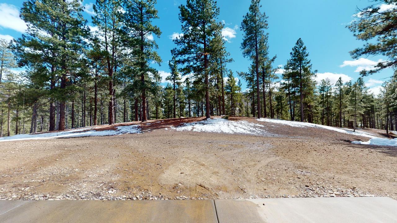 Pitman Cherry Creek Ranch - La Plata County Colorado