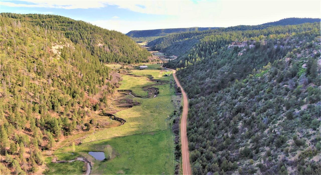Pitman Cherry Creek Ranch Driveway Aerial