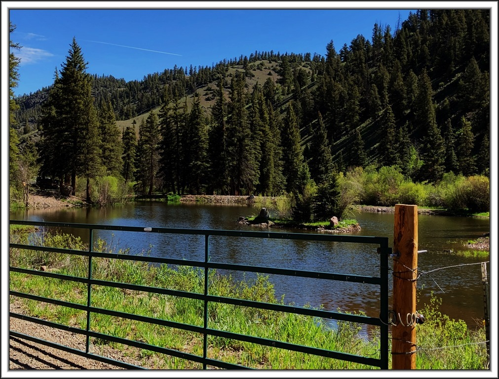 Live Water Ranch - Six J's Ranch