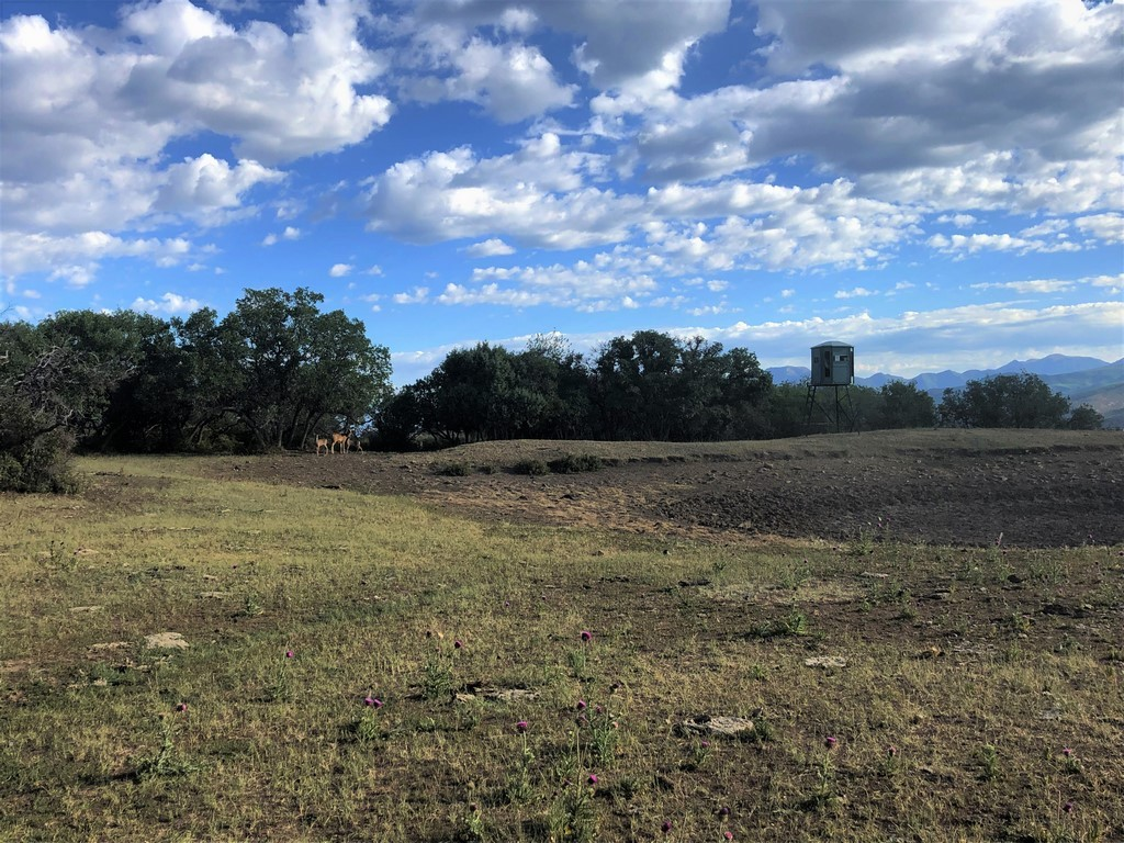 Crawford, CO Hunting Ranch For Sale - Ridge Ranch