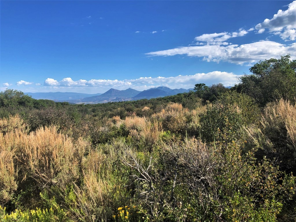 Hunting Land For Sale - Ridge Ranch