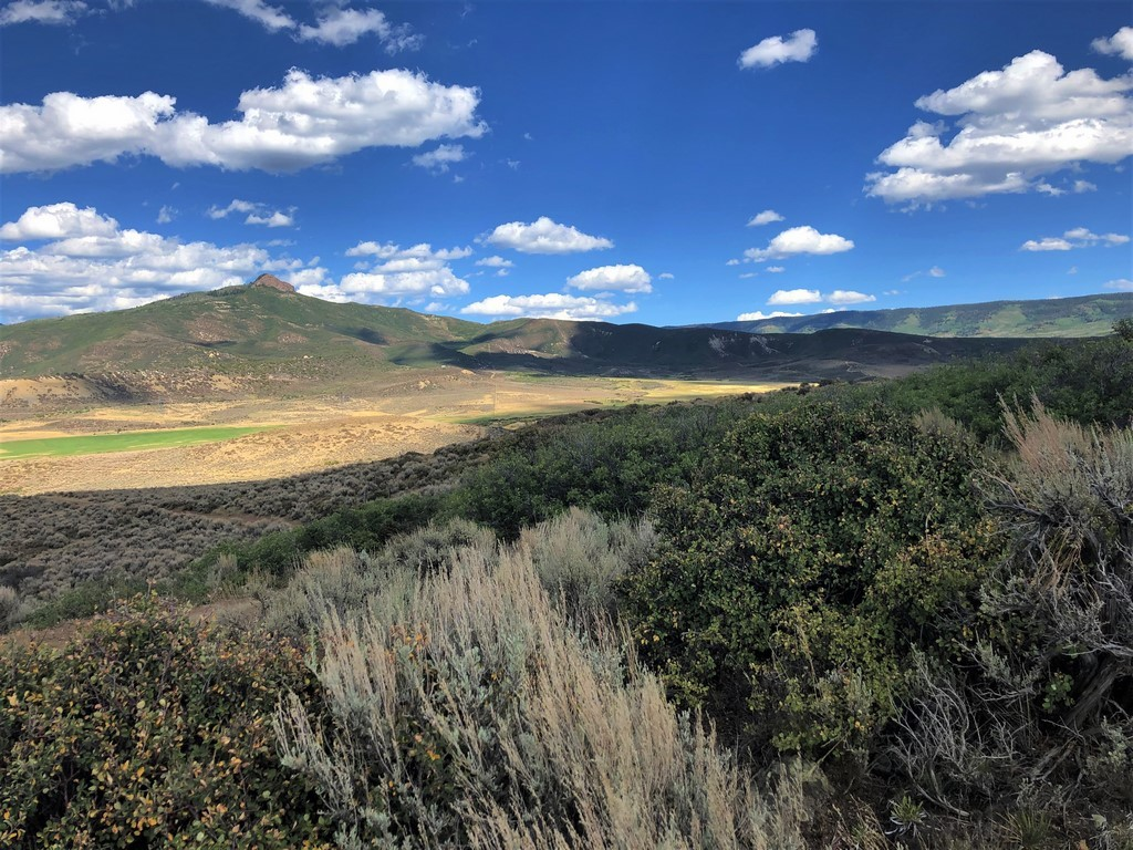 Agriculture Ranch For Sale - Ridge Ranch