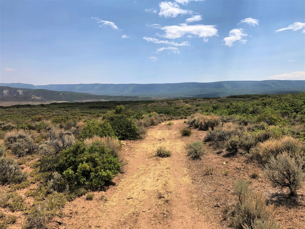 Cattle Ranch For Sale - Ridge Ranch