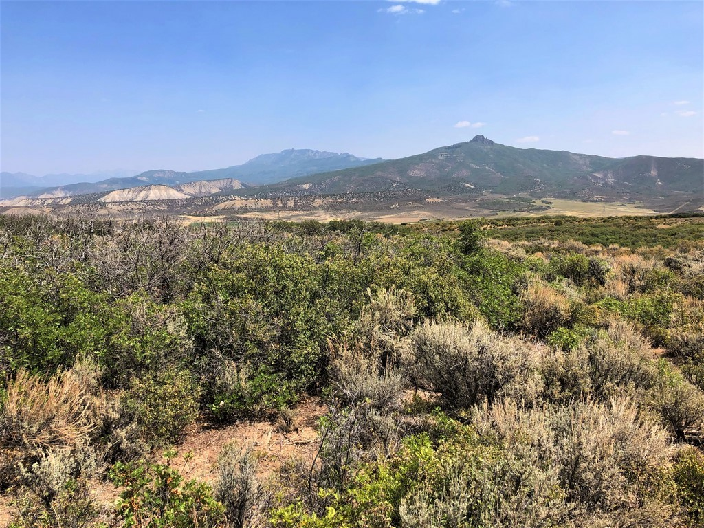 Hunting Ranch For Sale - Ridge Ranch