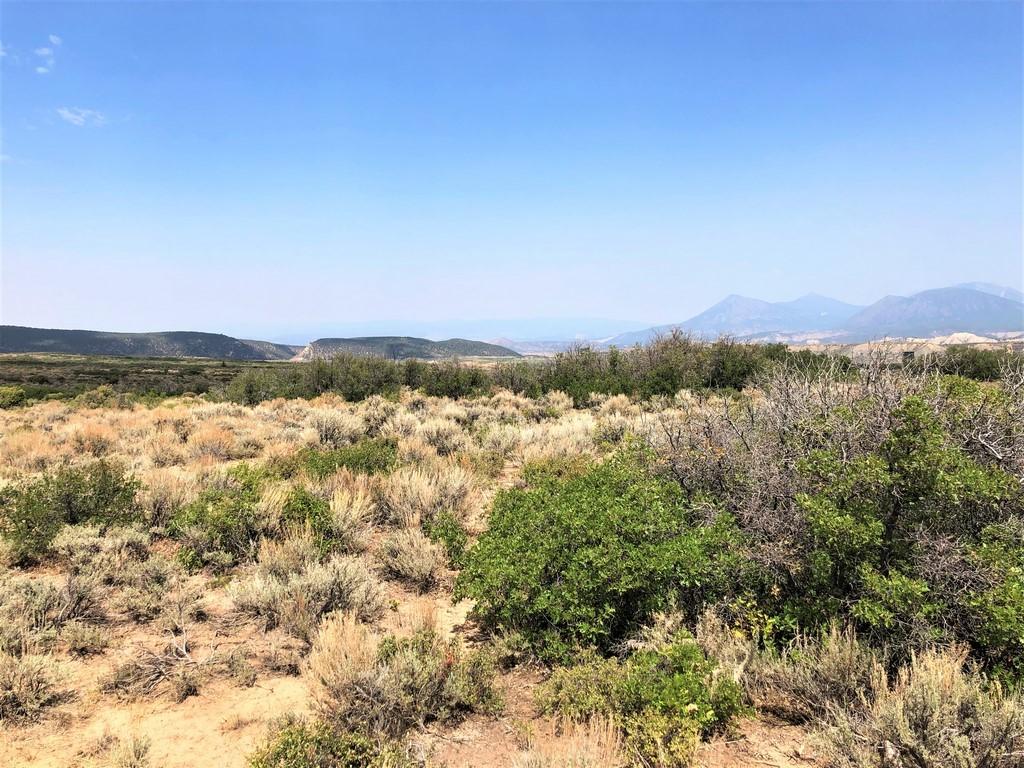 Ridge Ranch in Crawford, Colorado