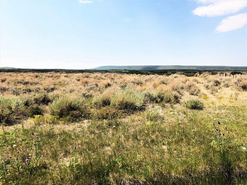 Ridge Ranch - Crawford, Colorado