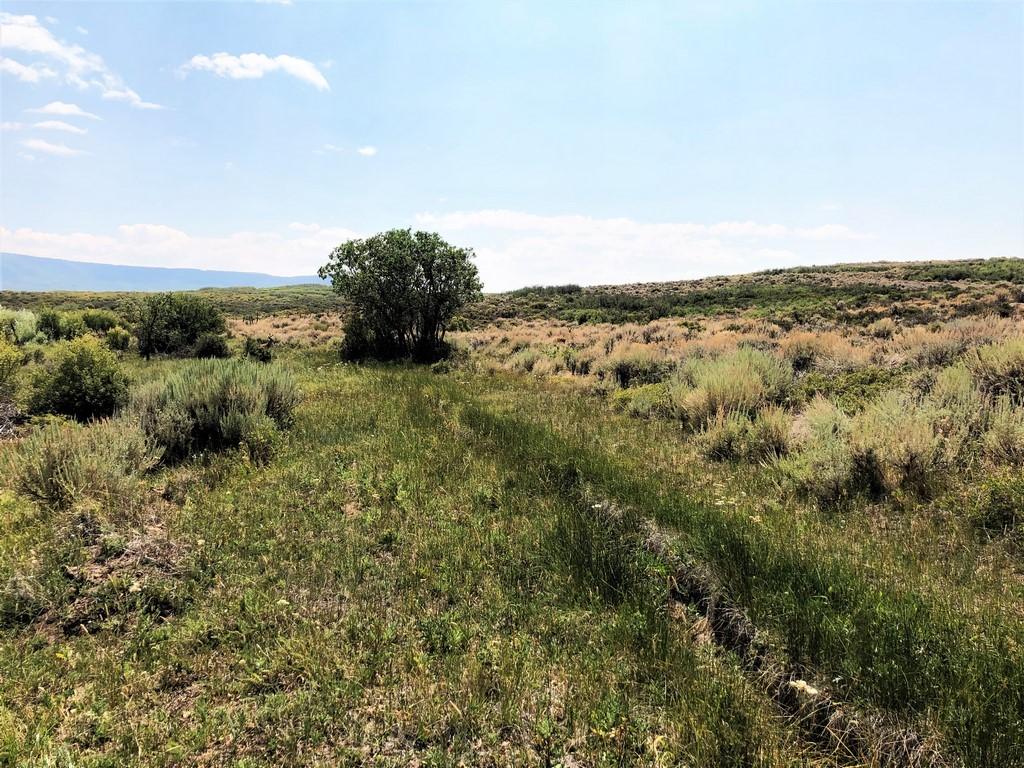 Ridge Ranch - Crawford, Colorado Farm Ranch