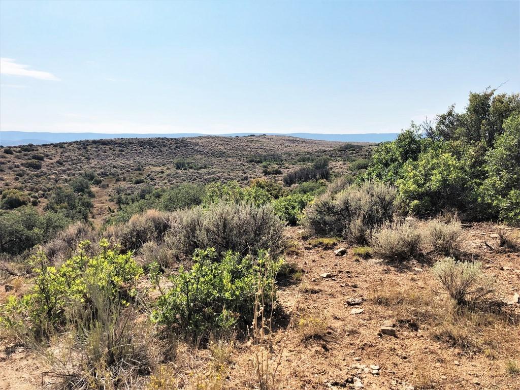 Ridge Ranch - North Fork Valley