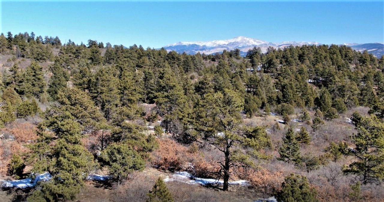 Muy Grande Ranch - Canon City, CO Mountain Property