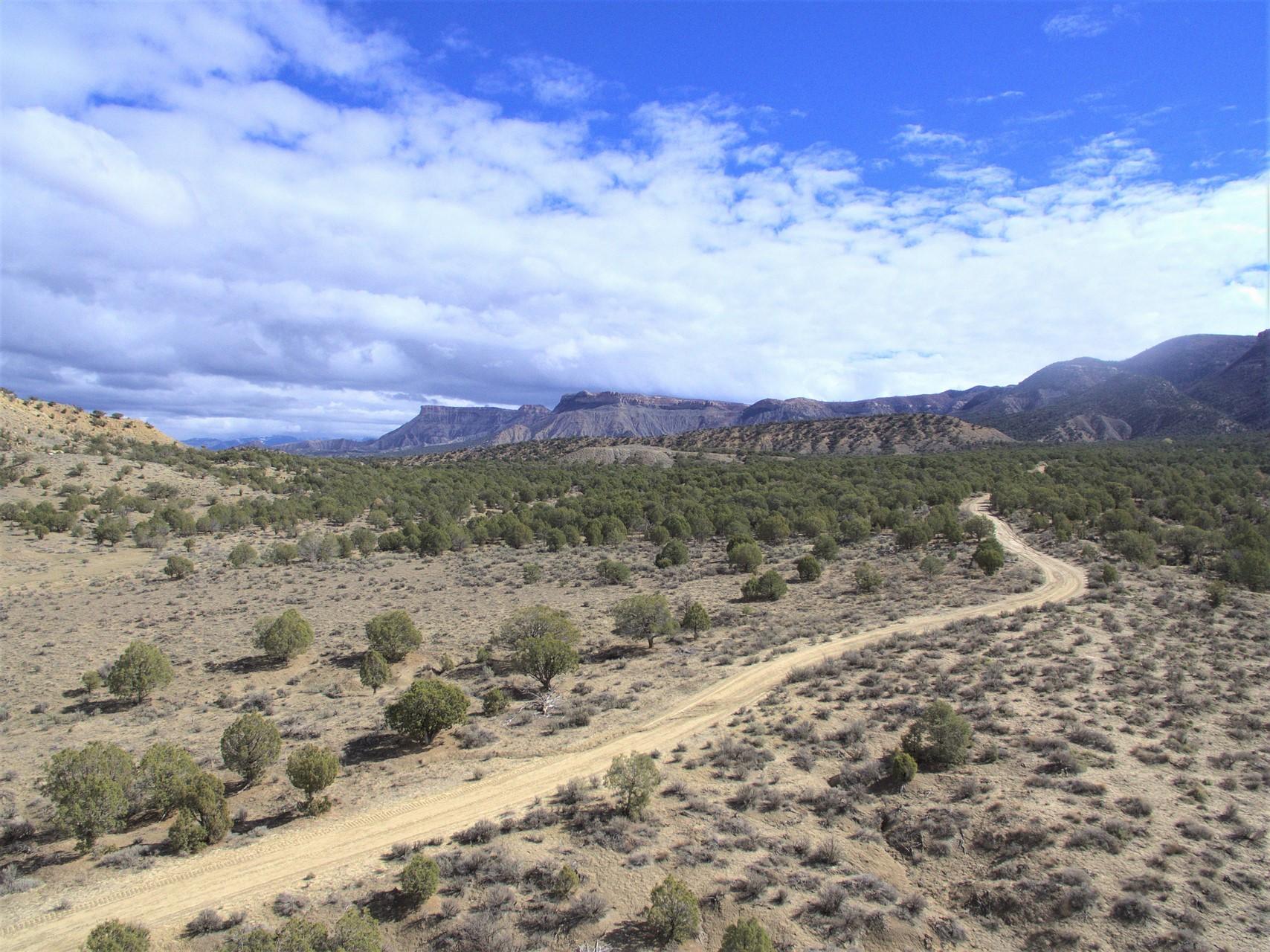 Mesa Verde Ranch Mountain View
